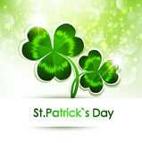 St.Patrick`s Day Stock Image