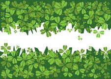St.Patrick`s day background Stock Images