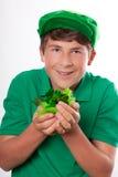 St Patrick's Day Celebration Stock Image