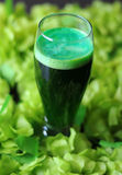 St Patrick's day green beer Royalty Free Stock Photos