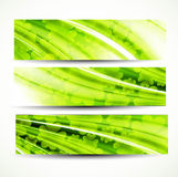 St. patrick's day green colorful  header Royalty Free Stock Photography