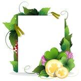 St. Patrick's Day invitation Stock Photography
