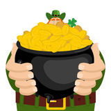 St. Patrick`s Day. Leprechaun and pot of gold. Magic dwarf and b Stock Photography