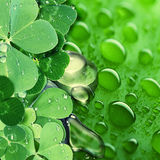 St. Patrick's Day paper background Stock Photos