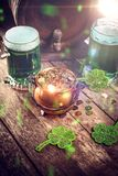 St Patrick`s Day still life. With cauldron of gold coins, green beer and shamrock