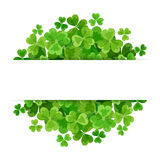St. Patrick's day vector background with shamrock. Stock Photography