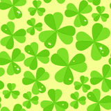 St. Patrick's day vector seamless background with shamrock Stock Photography