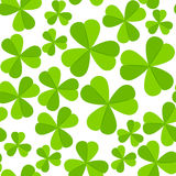 St. Patrick's day vector seamless background with shamrock Royalty Free Stock Photography