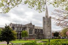 St Patrick & x27; s-domkyrka, dublin, Irland Arkivfoto