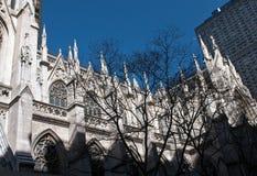 St Patrick ` s kathedraal New York Stock Fotografie