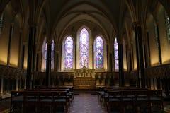 St- Patrick` s Kathedrale, Dublin, Irland Stockfotografie