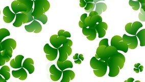 St- Patrick` s Tag, Klee, der unten, nahtloses geschlungen fällt stock footage