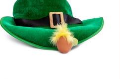 St Patrick van de de hoedenkabouter van het dagkostuum van het de kippenei isoiated de groene witte groene gele veren haar stock afbeelding