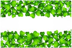 St Patricks day background with lucky green clover leaves Royalty Free Stock Photography