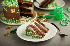 St Patricks day chocolate cake. With green sprinkles Stock Images