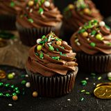 St Patricks day chocolate mint cupcakes. With green sprinkles Stock Images