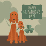 St. Patricks day greeting with funny Irish Setters Royalty Free Stock Photo