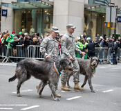 St Patricks Day. NEW YORK, NY, USA - MAR 17: St. Patrick's Day Parade on March 17, 2013 in New York City, United States stock image