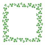 St Patricks Day square frame edge of shamrocks over white royalty free stock image