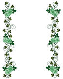 St Pattys Day Shamrocks and roses Royalty Free Stock Images