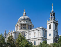 St Paul's Cathedral above the trees Royalty Free Stock Image