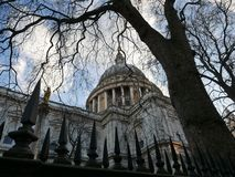 St. Pauls cathedral. Behind railings and seen through the bare branches of a tree in winter Royalty Free Stock Photos