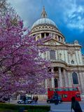 St Paul's Cathedral London Stock Photography
