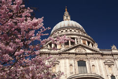 St Paul's Cathedral in the springtime Stock Photography