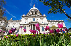 St Paul's in the spring Royalty Free Stock Photo