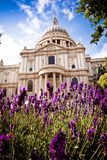St Paul's in the spring, daytime royalty free stock images