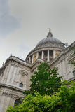 St Pauls Cathedral with tree Stock Photos