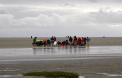 St. Peter Ording Royalty Free Stock Image