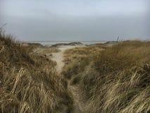 St Peter-Ording de las dunas en invierno Fotos de archivo libres de regalías