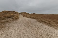 St Peter-Ording de las dunas en invierno Imagen de archivo libre de regalías
