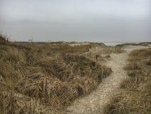 St Peter-Ording de las dunas en invierno Fotografía de archivo libre de regalías