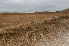 St Peter-Ording de las dunas en invierno Fotografía de archivo