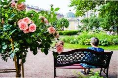 St Petersburg Été 2016 Une femme agée se reposant en parc de ville photo stock