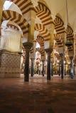 st petersburg мечети части декора собора керамический Стоковые Изображения RF
