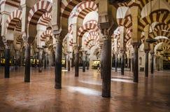 st petersburg мечети части декора собора керамический Стоковое Изображение RF