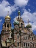 st petersburg собора Стоковые Изображения RF