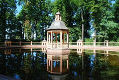 St Petersburg Royaltyfri Bild