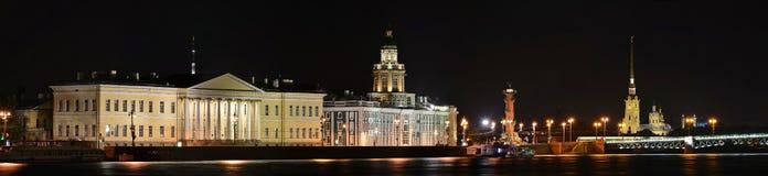 St Petersburg akademi av vetenskaper, kuriositetar Royaltyfria Bilder