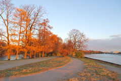 St. Petersburg. Autumn park at sunset Royalty Free Stock Image