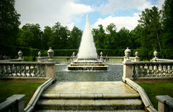 St.Petersburg. Beautiful classical garden Royalty Free Stock Photos