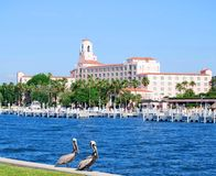 St Petersburg, beira-rio de Florida Imagens de Stock Royalty Free