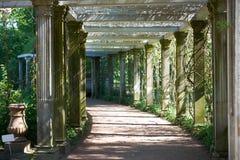 St Petersburg Catherine Park Colonnade Imagens de Stock