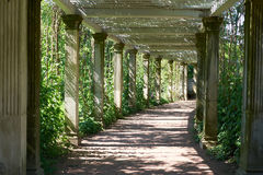 St Petersburg Catherine parka kolumnada zdjęcie stock