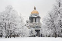 St. Petersburg in de winter Royalty-vrije Stock Foto
