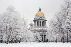 St Petersburg en hiver Photo libre de droits