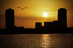 St. Petersburg, FL Sunset Stock Photo